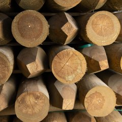 UC4, Kiln Dried Imported Pine Posts  - Pointed